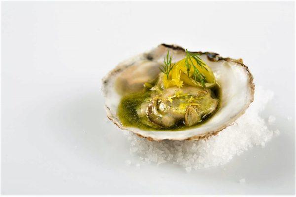 Master class de plancton marino - Cursos cocina - Escuela de cocina TELVA