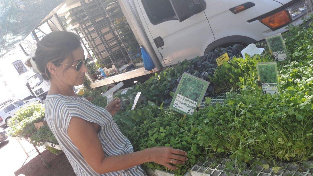 Sesé San Martín - Veranos portugueses - Mis cinco tenedores - Escuela de cocina TELVA - TELVA - Escuela de cocina en Madrid - Comprando verduras