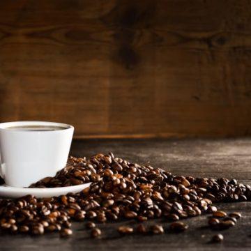 Curso para cafeteros - Seguro que te gusta el café - Café - Curso monográfico de cocina - Escuela de cocina TELVA - Curso de café